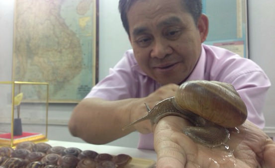 Where Do You Buy Your Snail Slime? A Push to Shop Locally | Siam Snail